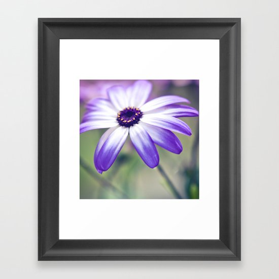 Serenity; Framed Art Print