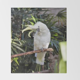 Sulfur-Crested Cockatoo Salutes the Photographer Throw Blanket