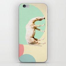 Mr. Horse iPhone & iPod Skin