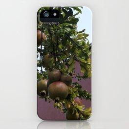hey persephone iPhone Case