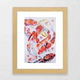 Koi Carp Fish Framed Art Print