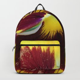 Pansy Close Up Backpack
