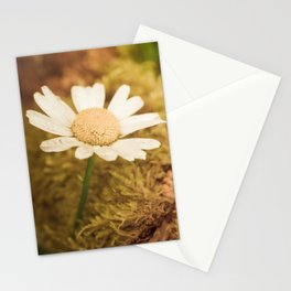 Daisy nature Stationery Cards