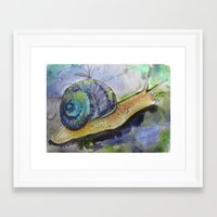 snail Framed Art Prints featuring SNAIL by Pumpkinstrudel Studio