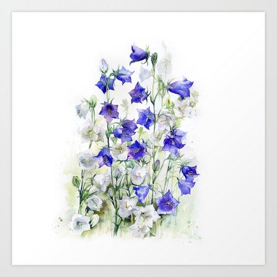 Bluebells watercolor flowers, aquarelle bellflowers Art Print