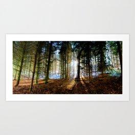 Winter Sunlight. Art Print