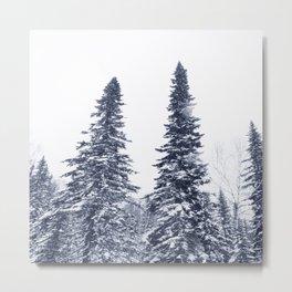 Fir-trees Metal Print