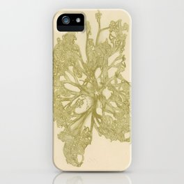 delicate starfish iPhone Case