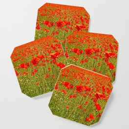Sea of Normandy Poppies Coaster
