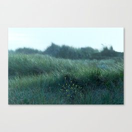 a breeze we used to know Canvas Print