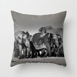 Elephant Herd Circling Throw Pillow