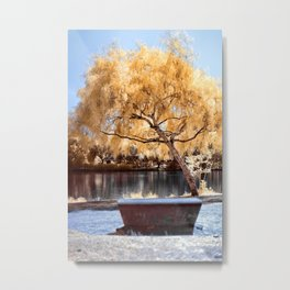 Autumn Colors Bench Metal Print