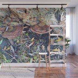 Mushrooms in Autumn Wall Mural