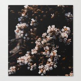 Wildflower Series - Hartz Peak Canvas Print