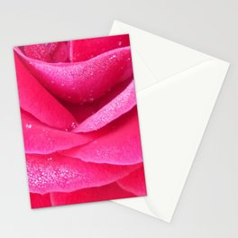 Dew on pink rose petals macro Stationery Cards