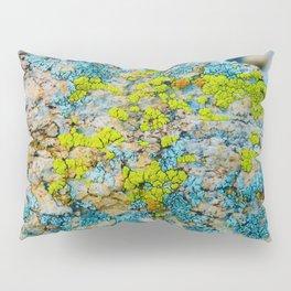 Hyper Lichen on Warm Desert Rock Pillow Sham