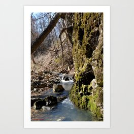 Alone in Secret Hollow with the Caves, Cascades, and Critters, No. 7 of 20 Art Print