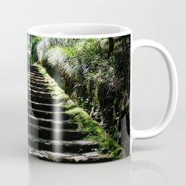 Rikyuu Road Coffee Mug