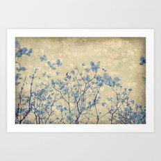 Vintage Duotone Indigo Blue and Cream Spring Dogwood Branches Art Print