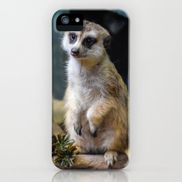 Huh? What'd you Say?? iPhone Case