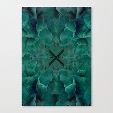 xflow Canvas Print