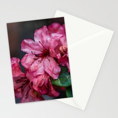 A Whole Bunch of Pink Stationery Cards