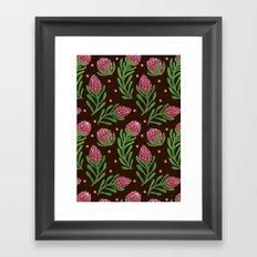The Sweet Protea  Framed Art Print