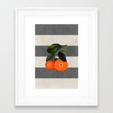 botanical stripes 6 -gray Framed Art Print