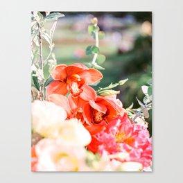 Red botanica on film Canvas Print