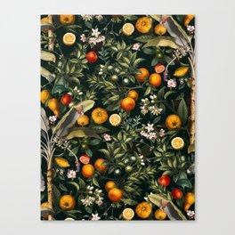 Vintage Fruit Pattern XXII Canvas Print