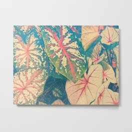 Surreal Caladium Metal Print