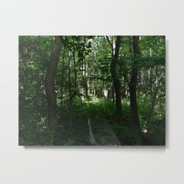 Entering the Forest Metal Print