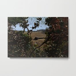 Landslide views Metal Print