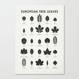 European Tree Leaves Canvas Print