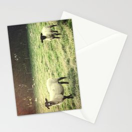 Dedicated Followers Stationery Cards
