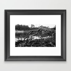Root Branches Framed Art Print