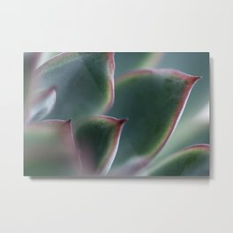 Reaching East Metal Print