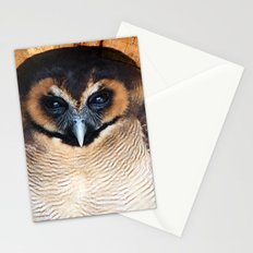 Asian wood Owl Stationery Cards