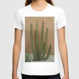 Cabo Cactus XI T-shirt