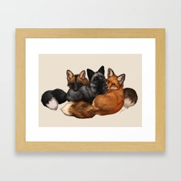 Fox Trio Framed Art Print