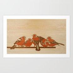 Chaffinches Art Print