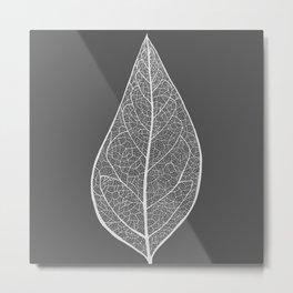 Leaf in Grey Metal Print
