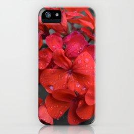 Red Geranium Tears iPhone Case