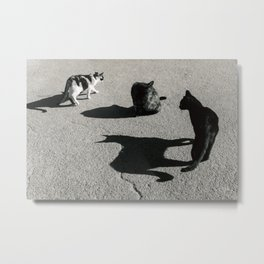 The Shadow Cat Metal Print