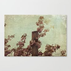 Faded Blossoms Canvas Print
