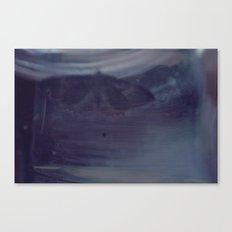 Moth-48 Canvas Print