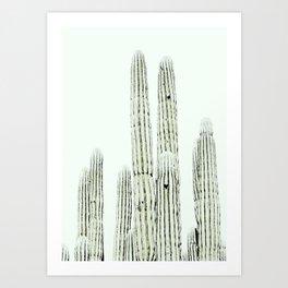 Cactus Desert Art Print