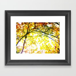 Lovely Autumn Leaves Tree Branch Nature - Canvas Texture Framed Art Print