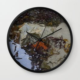 Collection of Seaweed in a Shallow Rockpool Wall Clock