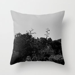 Raven sits on top of Mountain - Big Bend Throw Pillow